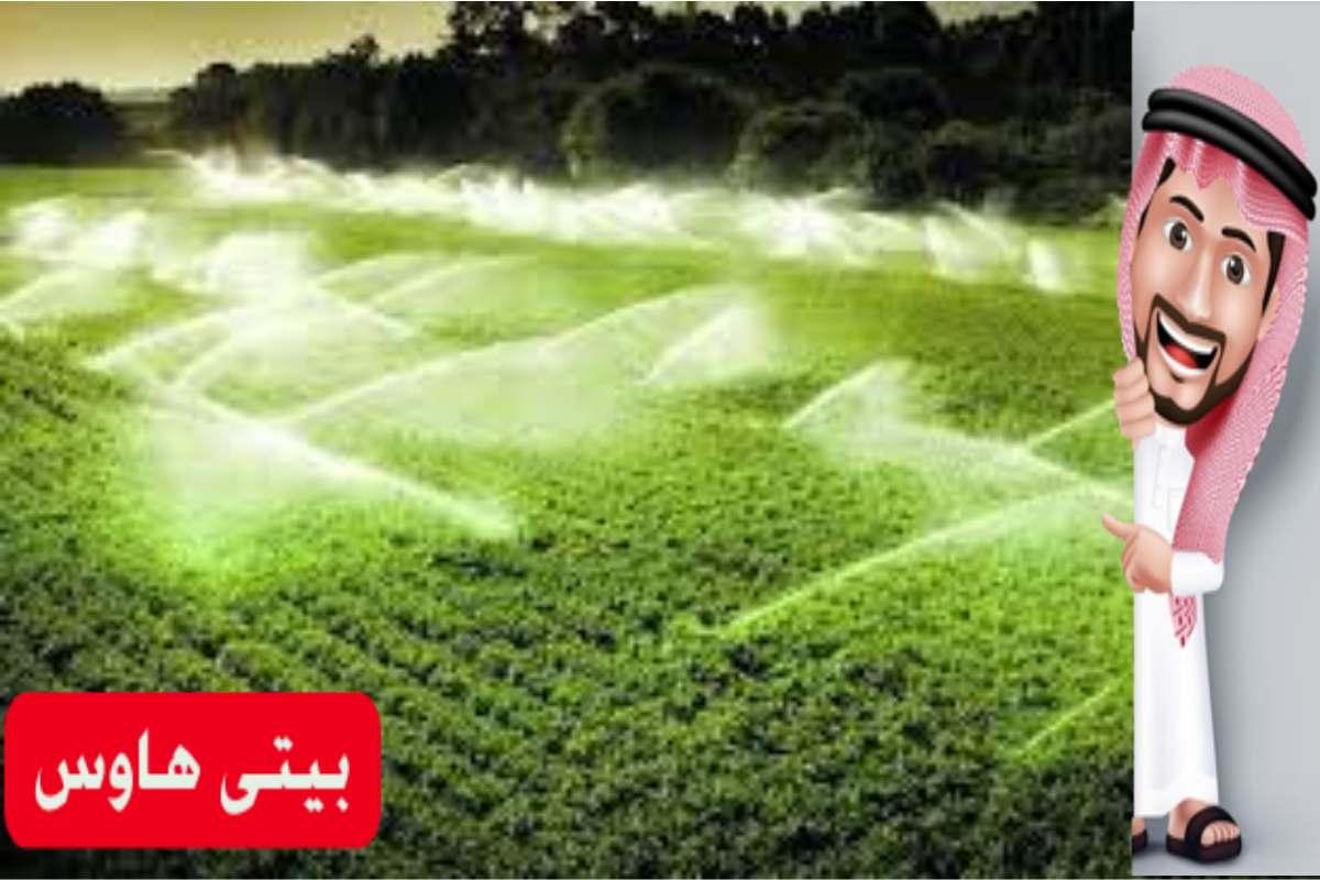 رابط موقع ريف الالكترونية لدعم المزارعين